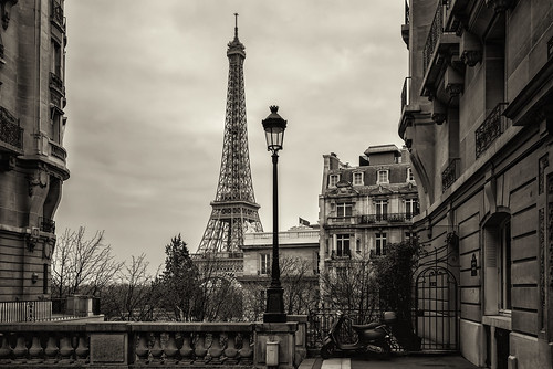 Paris in the Morning