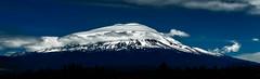 Mount Shasta showing off