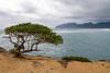 IMG_4046 (The.Rohit) Tags: ocean travel vacation beach hawaii waves oahu explore aloha seaarch laiepoint windwardcoast laiiepoint