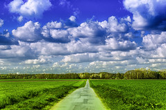 The Sky (KJ Photographie) Tags: road street blue trees sky tree green field grass clouds landscape deutschland nikon wind feld wiese himmel wolken grn blau landschaft bume baum acker strase salzbergen blumenundpflanzen