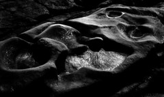 Salt point pools II (Amanda Tomlin) Tags: california fp4 5x7 canham
