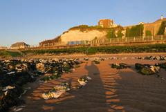 Bleak House (ray 96 blade (retired)) Tags: light shadow seaweed beach chalk rocks harbour cliffs lowtide sunrays charlesdickens broadstairs bleakhouse earlymorningwalk