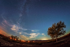 Morning Milky Way (inlightful) Tags: trees sky clouds stars dawn astrophotography astronomy starrynight milkyway skyglow starrysky