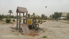 اطلال حديقة المنتزه في الدوحة - قطر (Feras.Qadoura) Tags: park al doha qatar دولة khail قطر الدوحة muntazah rawdat الخيل حديقة المنتزه روضة almuntazah