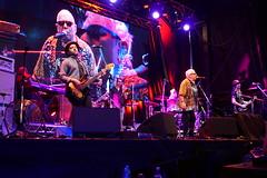 Eric Burdon and The Animals (Paradise Photos) Tags: musician music rock concert stage country crowd livemusic blues entertainment entertainer harp performer musicfestival harmonica liveconcert goldcoast broadbeach ericburdon ericburdonandtheanimals bluesonbroadbeach