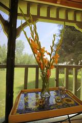 (eflon) Tags: flowers summer flower wideangle screen gazebo magnolia tray