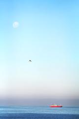 Hermosa tarde de luna casi llena en mar del plata (facubertelli) Tags: mar del plata landscape waterscape luna gabiota water ship barco argentina