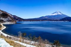 Lake Motosu Winter Fuji (shinichiro*_back) Tags: 20160125sdim0310 2016 crazyshin sigmasd1merrill sd1m sigma18300mmf3563dcmacrooshsm fuji daylight  yamanashi japan january winter snow  lakemotosu candidate