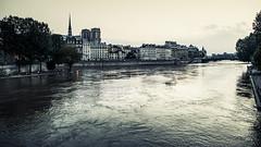La seine, Paris. (Photo-LB) Tags: paris france architecture landscape nikon eau notredame capitale paysage extrieur couchdesoleil laseine coursdeau 24afs