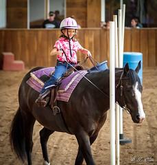 Show day-27 (Webbed Foot Photo) Tags: horses horse pennsylvania ponycamp webbedfootphotography pentaxk1 opengateranch darrenolsen dtolsen webbedfootphoto hunterhillsfarm