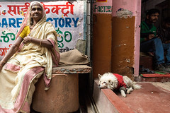 Woman, Dog and Men-DSC_1870 (thomschphotography3) Tags: street people woman dog india animal colours streetphotography varanasi oldwoman personen