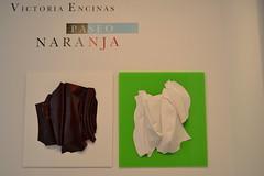 VICTORIA ENCINAS (11)