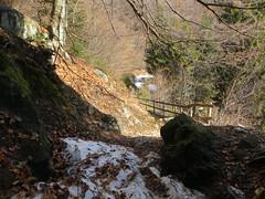2016-032922 (bubbahop) Tags: switzerland hike locarno 2016 cardada europetrip33