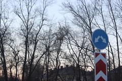 (Evgeny_Ukhov) Tags: tree sign foto minimalism