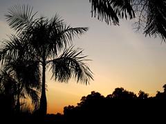 BANDAR SERI BAGAWAN BRUNEI DARUSSALAM SUNSET (patrick555666751) Tags: sunset de soleil asia south coucher du east asie brunei sud est seri bandar darussalam bagawan bandarseribagawanbruneidarussalamsunset
