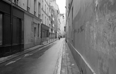 Street in Paris (Amelien (Fr)) Tags: leica blackandwhite bw film monochrome analog 35mm noiretblanc kodak tmax alt hc110 nb 400 epson expired argentique 131 v550 r6 2016 pellicule dilutionb filmisnotdead r62 summicronr expire homescanned believeinfilm capturedonrealfilm