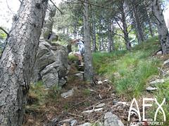 Lizzari-30 (Cicloalpinismo) Tags: parco mountain bike video foto extreme mtb cai monte sentiero alpi aex 190 apuane appennino vinca vetta foce escursione altana ugliancaldo cicloalpinismo cicloescursionismo lizzari