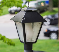 Lamp. Day 143 (RPStrick) Tags: trees light green lamp lantern