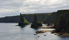Duncansby Stacks (images@twiston) Tags: sea point landscape coast scotland head north shoreline scottish shore coastline mainland seabirds stacks easterly duncansby duncansbystacks my365year
