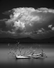 san diego : lake henshaw (William Dunigan) Tags: san diego mountains foothills lake henshaw east county southern california west coast coastal region rain monsoon clouds sky minimalism black white photography long exposure nature landscape motion blur water reflection william dunigan big nikon d800