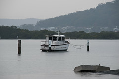 Overcast waterscape (Merrillie) Tags: morning sea mountain seascape nature water landscape outdoors photography bay boat nikon scenery australia hills nsw newsouthwales centralcoast waterscape brisbanewater woywoy d5500 nswcentralcoast centralcoastnsw