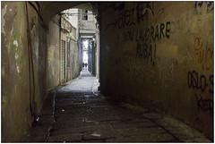 Non lavorare, ruba! - Don't work, steal! (Matteo Bersani) Tags: lavorare lavoro rubare work steal genova via strada streetphotograpy alley ombra penombra shadow