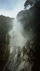 86700002 (olliethewino) Tags: waterfall australia tasmania