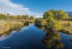 Autumn at the Owens River (Photosuze) Tags: river landscape easternsierras california owensriver rivers green trees grass reflection clouds sky