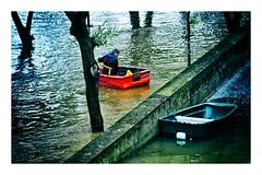 crue de la Seine (1) (Marie Hacene) Tags: crueseine pont barque arbres paris