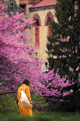Spring at Ohio State (Elliotphotos) Tags: pink trees ohio people color colors yellow hall spring university state columbusohio elliot theohiostateuniversity orton ohiostate ohiostateuniversity the ortonhall gilfix elliotphotos ohiostateunviersity elliotgilfix