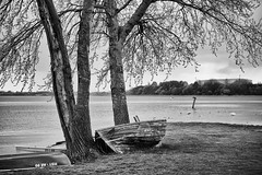 2015-04-30-Stralsund-20150430-173317-i228-p0047-_Bearbeitet1531-ILCE-6000-50_mm-.jpg