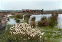 Bolton Fell, Cumbria (Kingmoor Klickr) Tags: industrial railway cumbria narrowgauge simplex liddel 7188 motorrail hethersgill boltonfell williamsinclairhorticultural