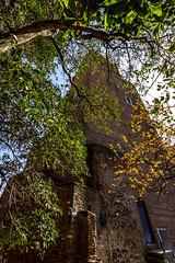 "Torre delle Milizie • <a style=""font-size:0.8em;"" href=""http://www.flickr.com/photos/89679026@N00/17124926835/"" target=""_blank"">View on Flickr</a>"