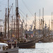 826. Hamburger Hafengeburtstag: Segelschiffe