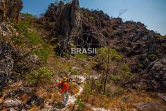 CO_Chapada0233 (Visit Brasil) Tags: travel brazil tourism nature horizontal brasil natureza unesco adventure árvore chapada cavalcante ecoturismo trilha vegetação ecotourism centrooeste penhascos comgente diurna pontedepedra visitbrasil