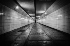 Maastunnel (Steven Dijkshoorn) Tags: rotterdam tunnel 010 maastunnel rotjeknor