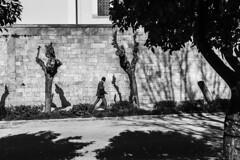 Street shadows in Athens (munal4) Tags: street travel light shadow bw white black contrast nikon athens sokak glge atina nikondf