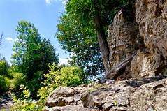 Old Man in the Limestone (stevebowmanphotography) Tags: durham waterfalls grotto limestonecliffs mcgowanfalls