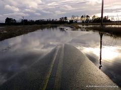 09 February 2016: Super high tide (RobinMSP) Tags: road winter nature creek afterthestorm tide maryland easternshore hightide dailywalk superhightide maidinsunphotography february2016k