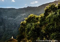 Behind the olive tree (Pierah) Tags: island canaryislands montain vulcano vulcanic elhierro