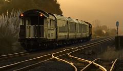 For real? (zebedee1971) Tags: trees light sunset sun sunlight landscape dusk rails passenger signal kiwirail