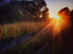 Solar blast (DaChu88) Tags: sunset sunshine fence rays sunrays iphone iphotography iphoneography iphone6s
