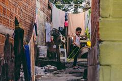 Liberacin  Los Sauces (Eliminar el Dengue Colombia) Tags: colombia nios mosquito bacteria virus barrio comunidad sauces dengue medelln antioquia salud bello prevencin aedes desafo udea liberaciones aegypti pecet antidengue
