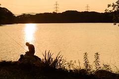 38Yamada Pond Park (anglo10) Tags: sunset japan