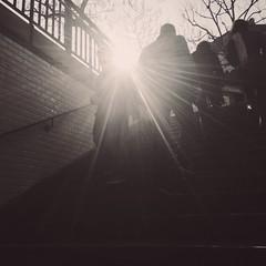 08-04-15- À travers la lumière (marisan67) Tags: street paris detail photo photographie streetphoto 365 rue pola détail iphone cliché 5s 2015 instantané 365project iphone4 iphonography iphonegraphy iphonographer polaphone iphonographie iphoneographie iphone5s