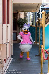 Daisy Duck (VISA Meet 'n' Greet)