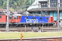 SBB Cargo 620 061-2 (jlovda) Tags: schweiz suisse swiss zurich sbb lausanne depot locomotive re bellinzona bls fo ae brig ffs steg mgb lokomotive lok rhb gotthard cff wassen re66 gampel brunig erstfeld ae66