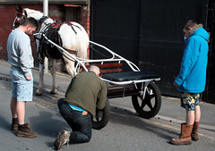 Bywyd y stryd / Street life - Bolton Street, Blackpool (Rhisiart Hincks) Tags: street england horse caballo cheval lancashire angleterre ru rue blackpool cavallo kale pferd each hest capal inghilterra lloegr fylde ceffyl   l arklys equuscaballus stryd ingalaterra brosaoz sirgaerhirfryn sasana zaldi fyldecoast kazeg k hobune  zirgs  hoiho anglie anglaterra powsows sasainn straed angletrra  ngilandi cabbyl