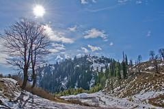 A Bright Morning at Shogran (Taqadus Rehman) Tags: pakistan landscape shogran