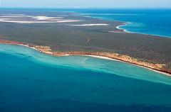 Shark Bay WA - DSC3197